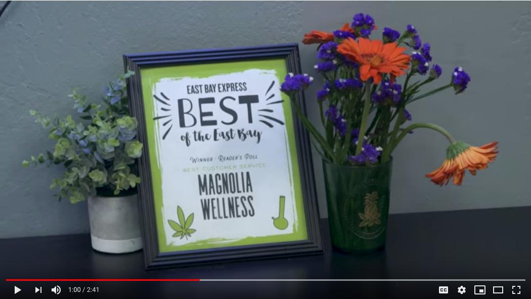 VIDEO: Member Spotlight – Magnolia Wellness