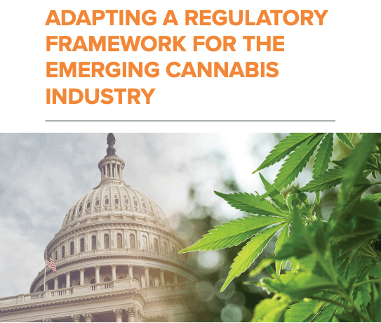 Adapting A Regulatory Framework For The Emerging Cannabis Industry