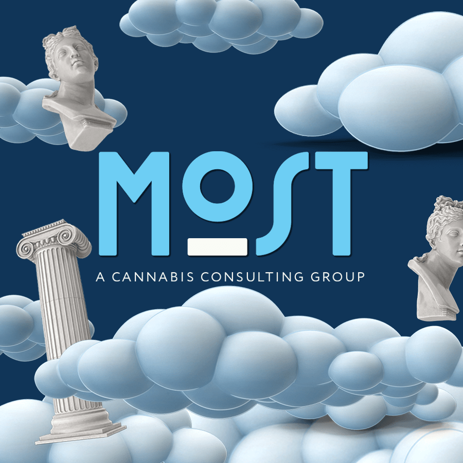 Cannabis Consulting and Marketing Firm Goes Through Rebrand After 11 Years